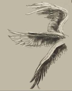 wingy