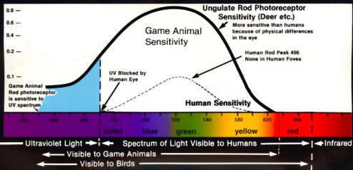 animals_spectral_sensitivity
